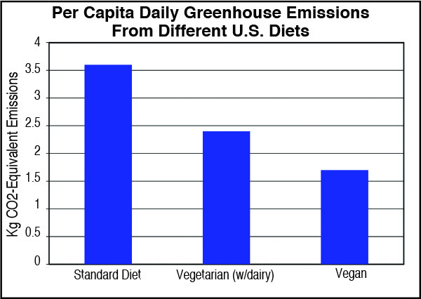 Graph showing greenhouse emissions from 3 different personal diets
